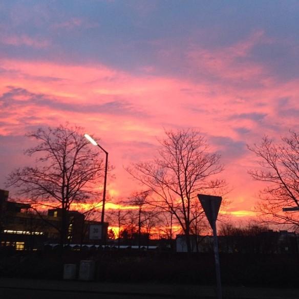Sonnenaufgang Köln